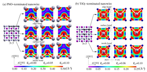 Multi-Physics Properties in Ferroelectric Nanowires and Related