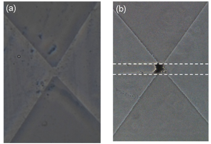 Niobates Nanowires: Synthesis, Characterization and ...