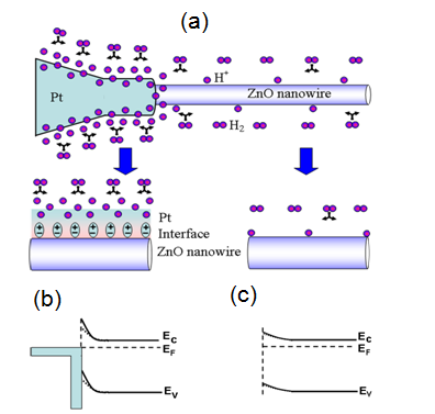 junction properties and applications of zno single nanowire based figure 13