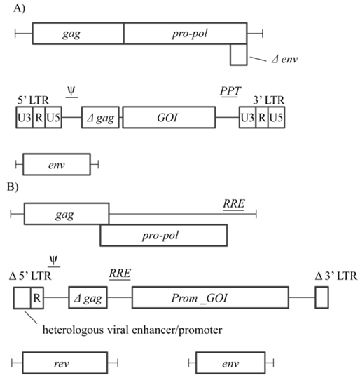 Production Of Retroviral And Lentiviral Gene Therapy Vectors