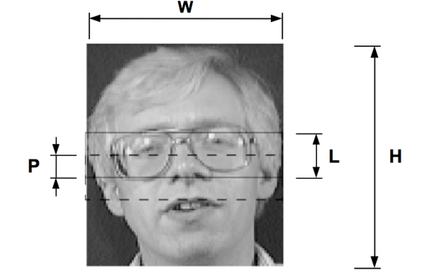 Hidden Markov Models in Automatic Face Recognition - A Review