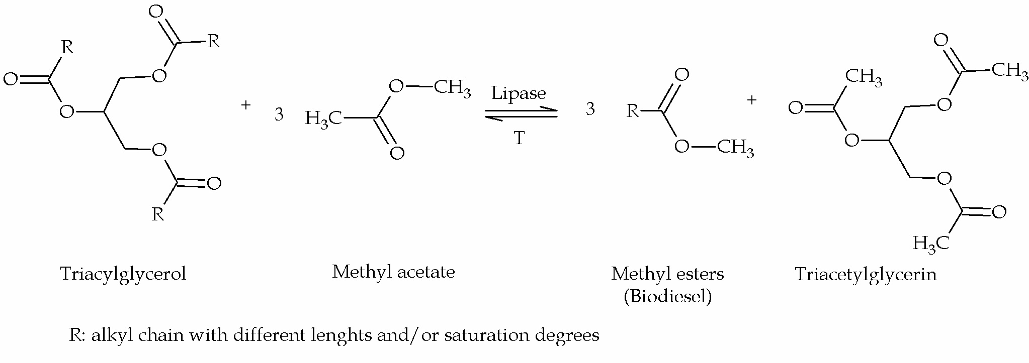 An Overview Of Enzyme Catalyzed Reactions And Alternative