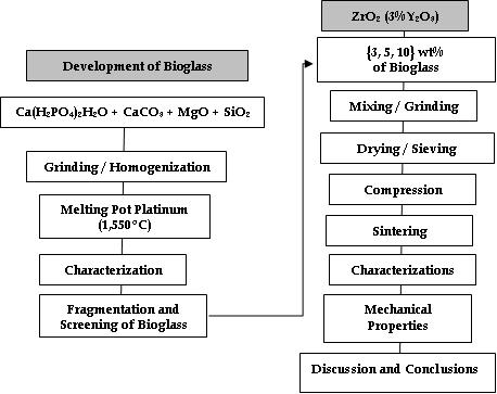 ZrO2-Bioglass Dental Ceramics: Processing, Structural and
