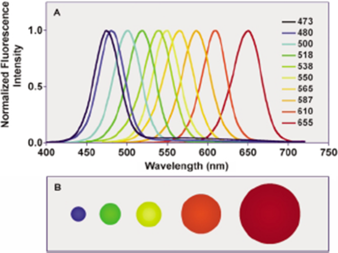 Semiconductor Ii Vi Quantum Dots With Interface States And