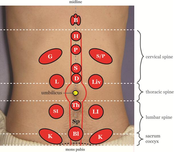 Yamamoto New Scalp Acupuncture (YNSA): Development