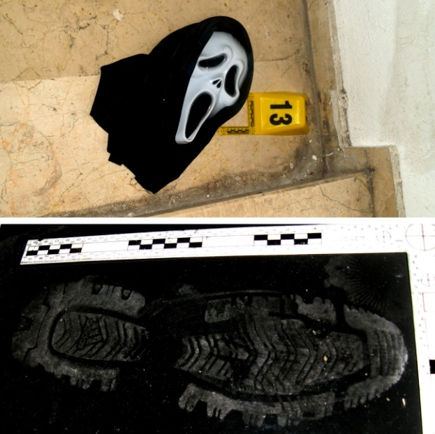 Death Scene Investigation from the Viewpoint of Forensic ...