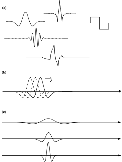 Implementation of the Discrete Wavelet Transform Used in the