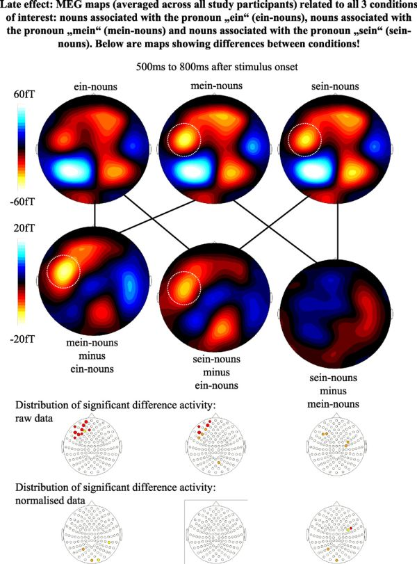 Of test map consciousness Map of