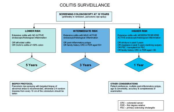 Carcinogenesis In Ulcerative Colitis Intechopen