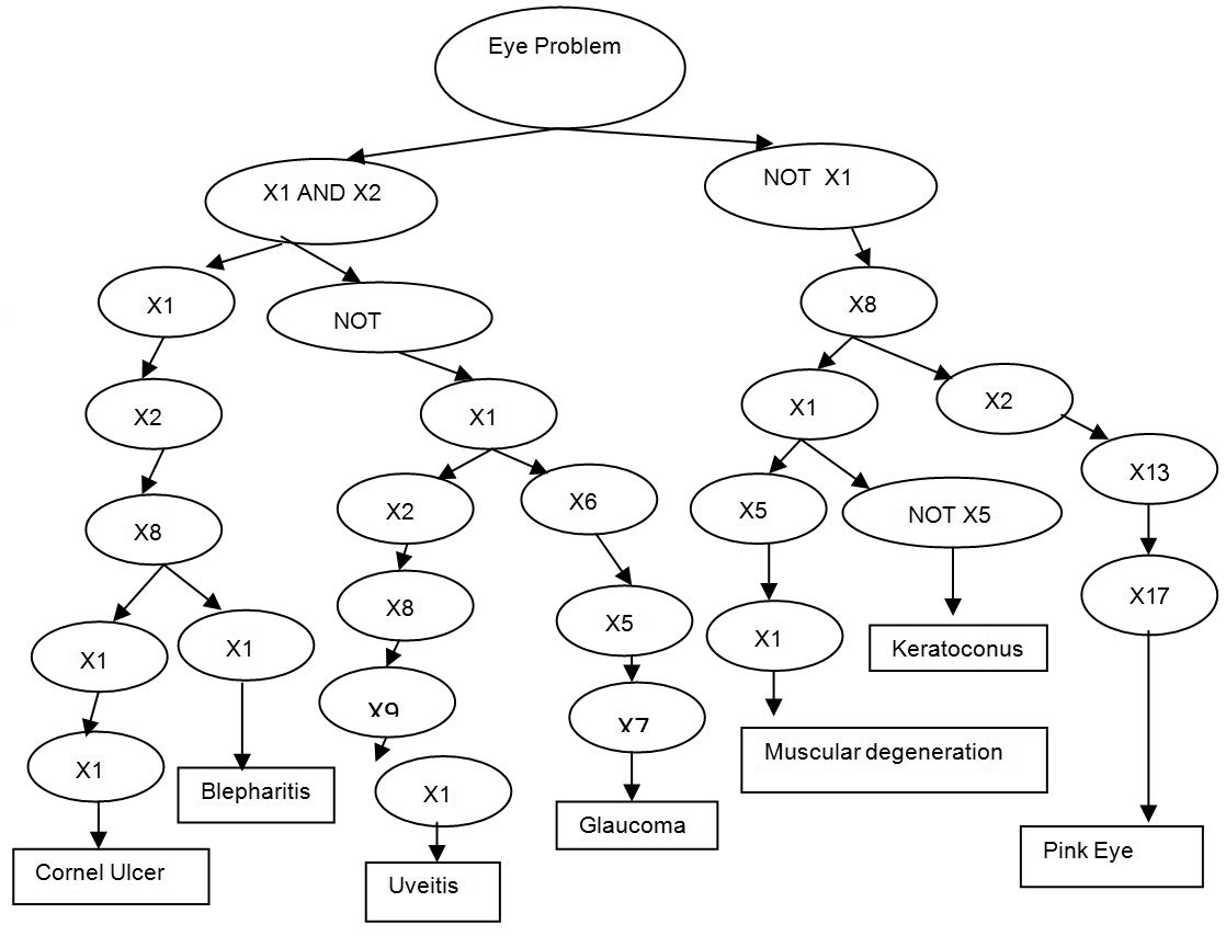 Neural Networks and Decision Trees For Eye Diseases Diagnosis