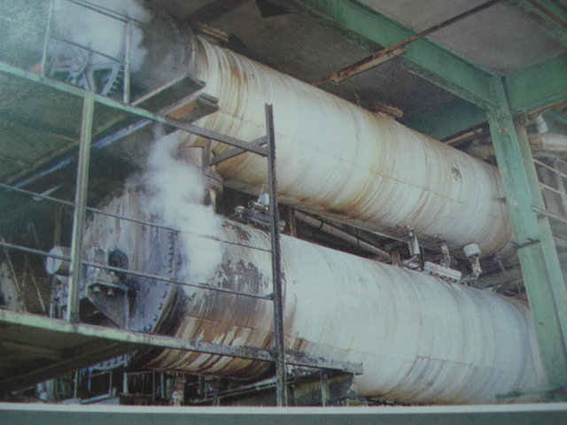 Environmental Benefit of Using Bagasse in Paper Production - A Case