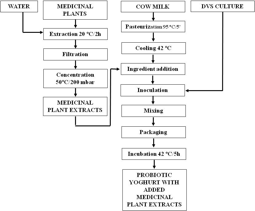 process flow diagram for yogurt production milk and dairy products: vectors to create probiotic ...