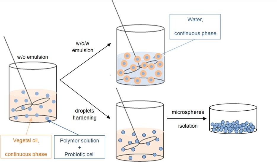 e77aaa3fba Encapsulation Technology to Protect Probiotic Bacteria
