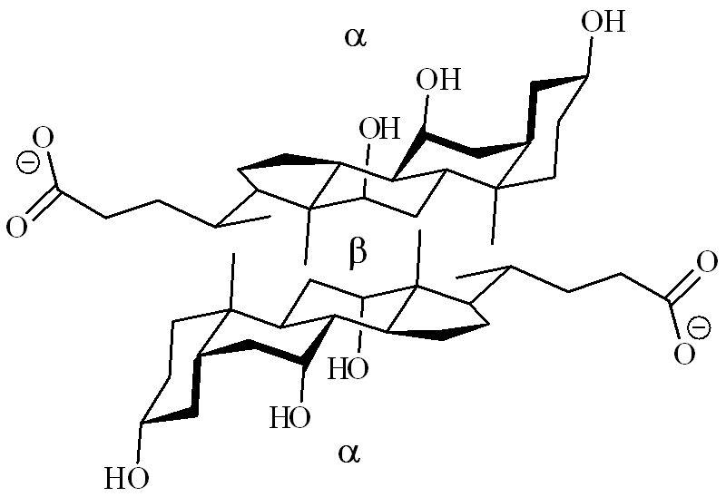 Chromatographic Retention Parameters As Molecular Descriptors For