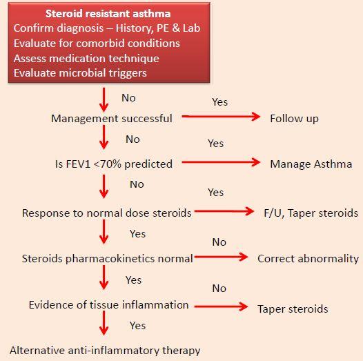 Prednisolone steroid tablets for asthma axiolabs testaplex e 250