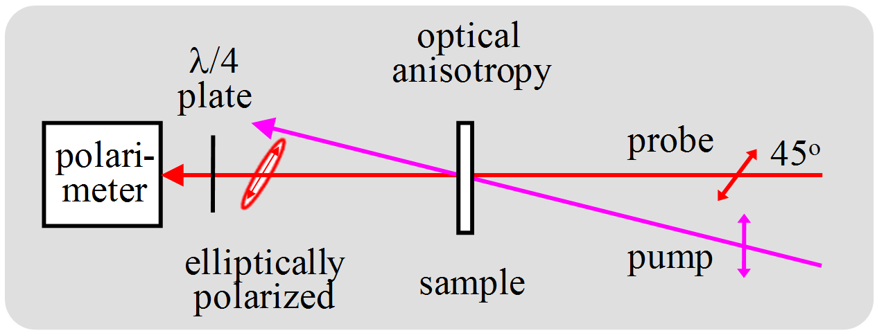 Polarized Spectroscopy of Ordered Systems