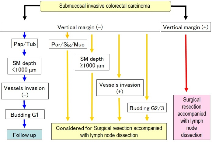 Desmoplastic Reaction In Biopsy Specimens Of T1 Stage Colorectal Cancer Plays A Critical Role In Defining The Level Of Sub Mucosal Invasion Intechopen
