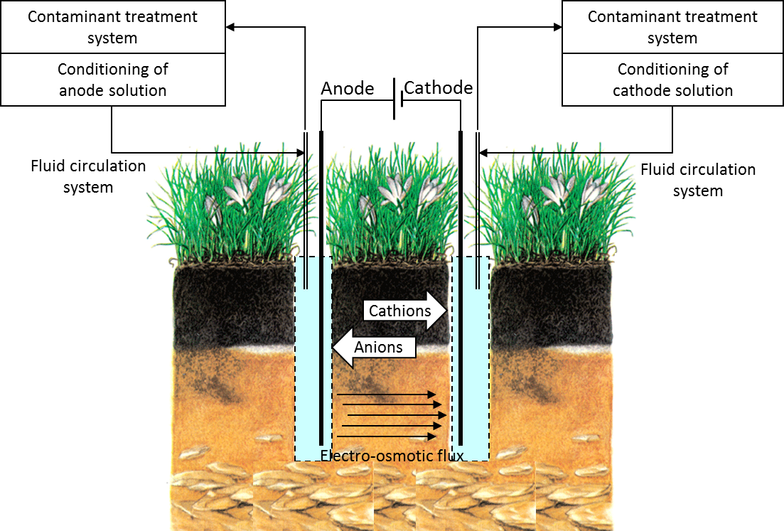Advances in Electrokinetic Remediation for the Removal of Organic  Contaminants in Soils | IntechOpen