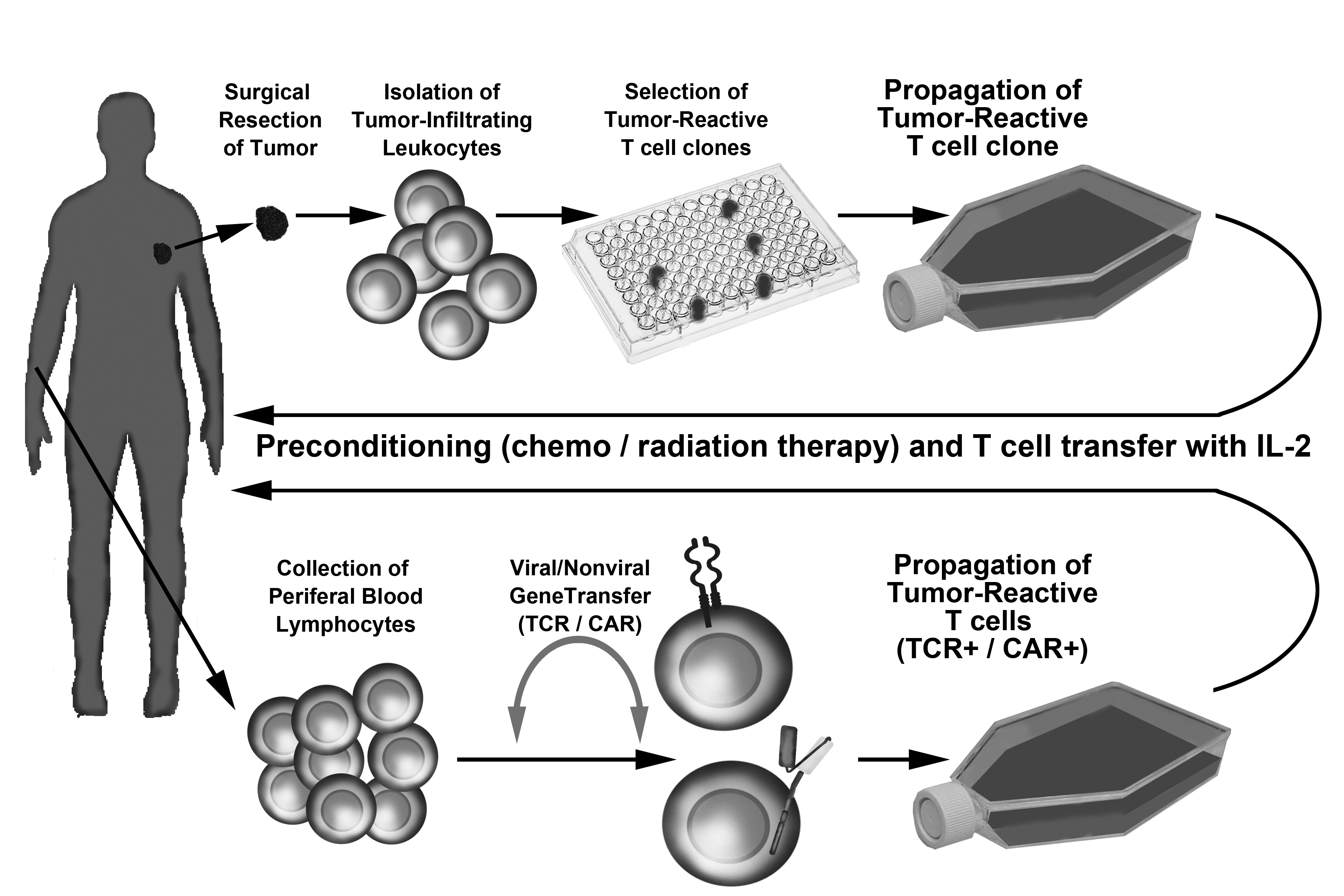 recombinant dna technology in emerging modalities for melanoma