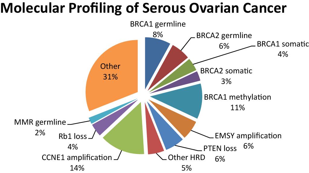 Parp Inhibitors In Ovarian Cancer Intechopen