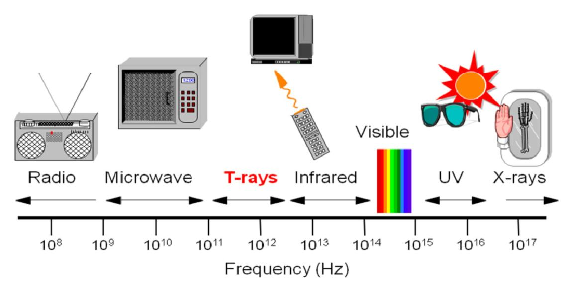 electromagnetic waves and their application to charged particle
