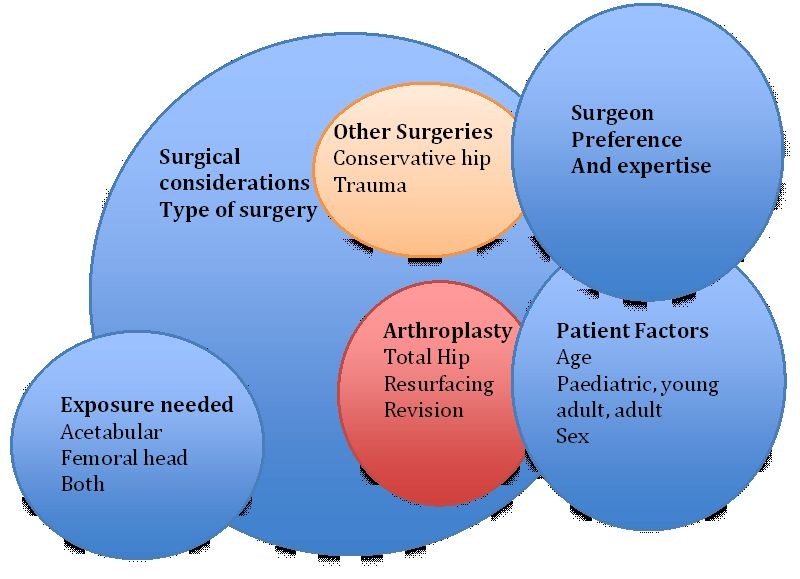 Surgical Approaches to the Hip Joint and Its Clinical