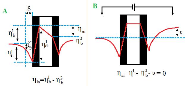 Membrane Electrochemistry Electrochemical Processes In Bilayer