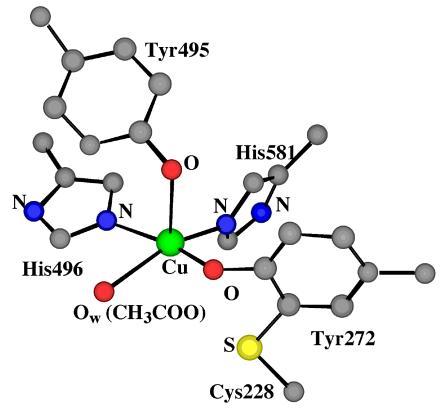 Oxidation Chemistry Of Metalii Salen Type Complexes