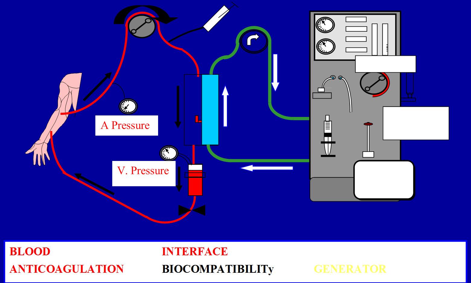 arteriovenous fistula or catheter creating an optimal vascular