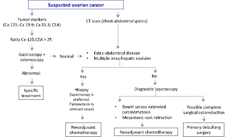 Surgical Treatment Of Ovarian Cancer Intechopen