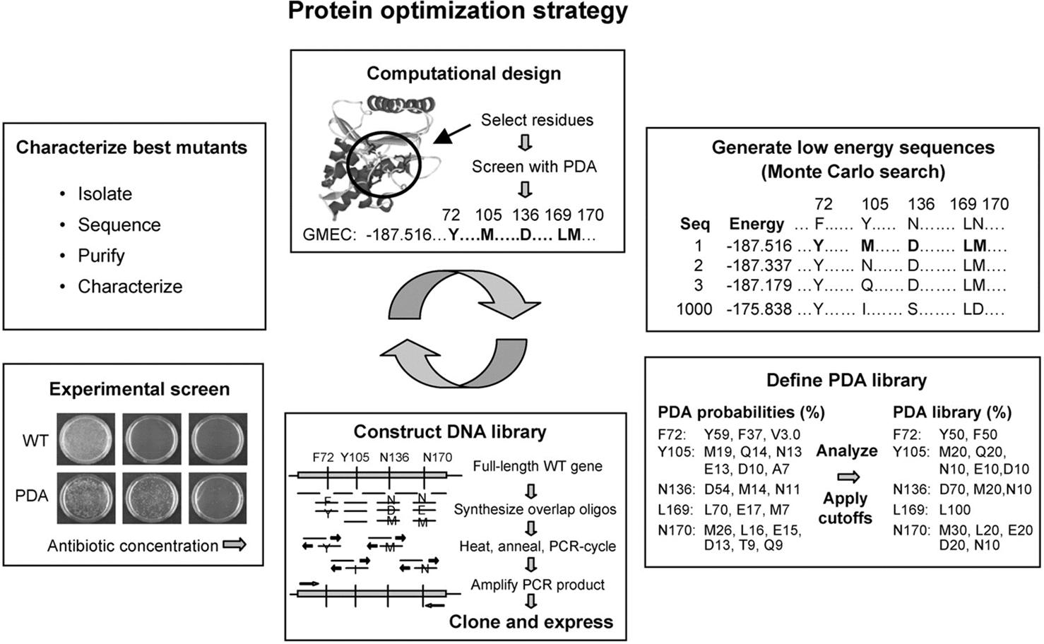 GFP-Based Biosensors | IntechOpen