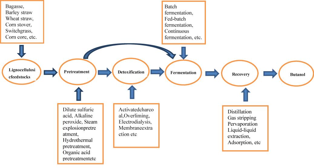 The Promising Fuel-Biobutanol | IntechOpen