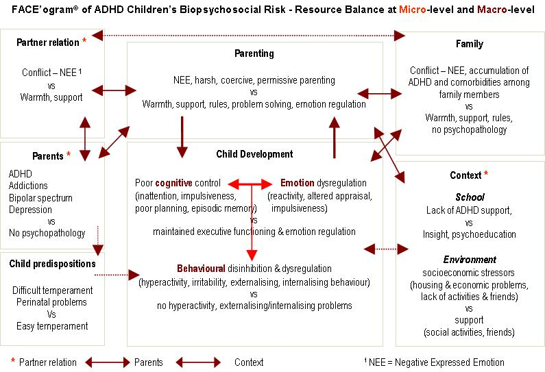 Emotional Regulation For Kids With Adhd >> Adhd Children S Emotion Regulation In Face C Perspective
