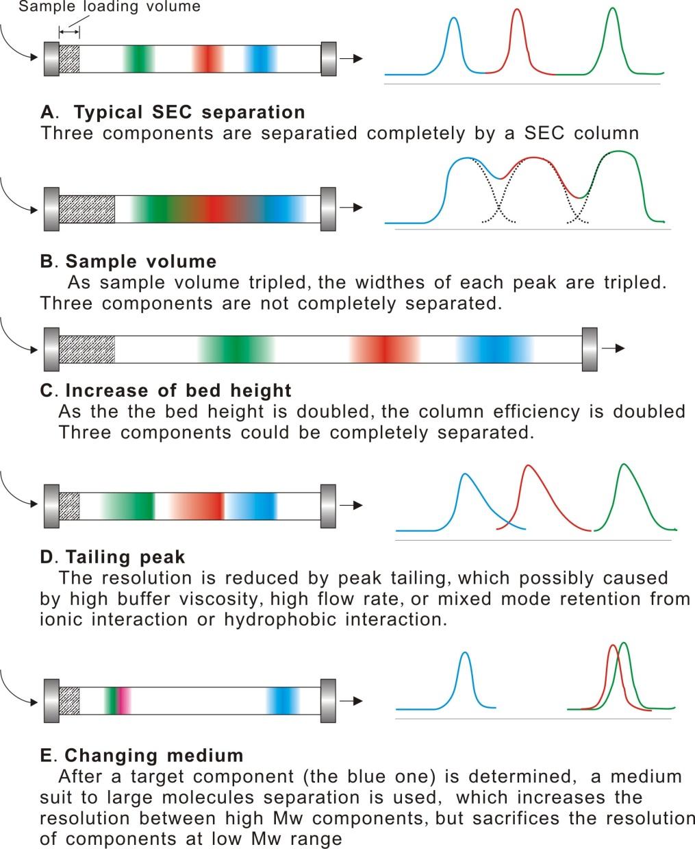Chromatography Method Intechopen