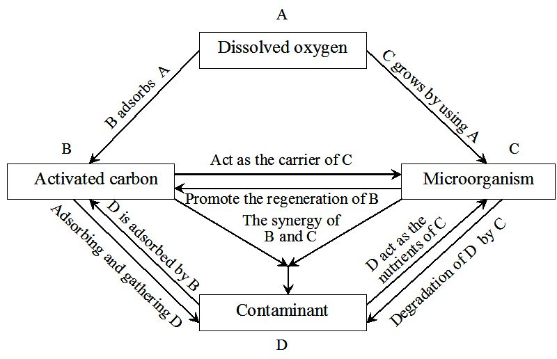 Biological Activated Carbon Treatment Process for Advanced