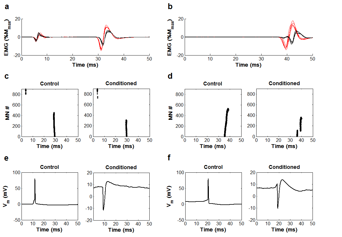 Experimental And Simulated Emg Responses In The Study Of Human Interval Methods For Analog Circuits Intechopen Figure 17