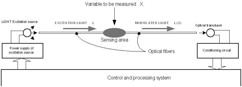 figure 3  diagram of the complete intrinsic optical