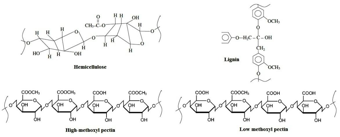 Biodegradable Polymers   IntechOpen