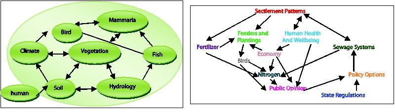 رشد بیولوژیکی در چرخههای مختلف