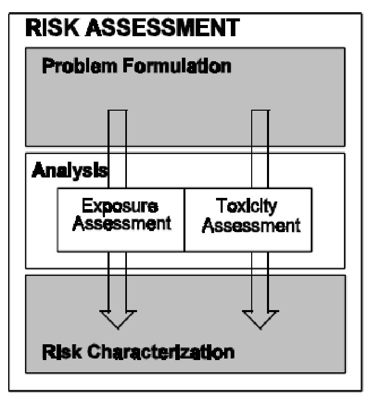 risk analysis paper