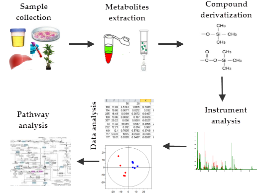 Gas Chromatography in Metabolomics Study | IntechOpen