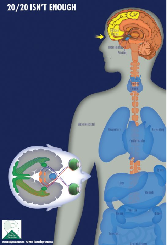 Auditory/Visual Integration Assessment and Treatment in Brain ...