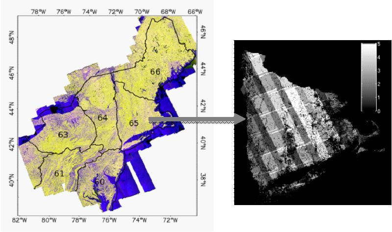 Large Scale Mapping of Forests and Land Cover with Synthetic ...
