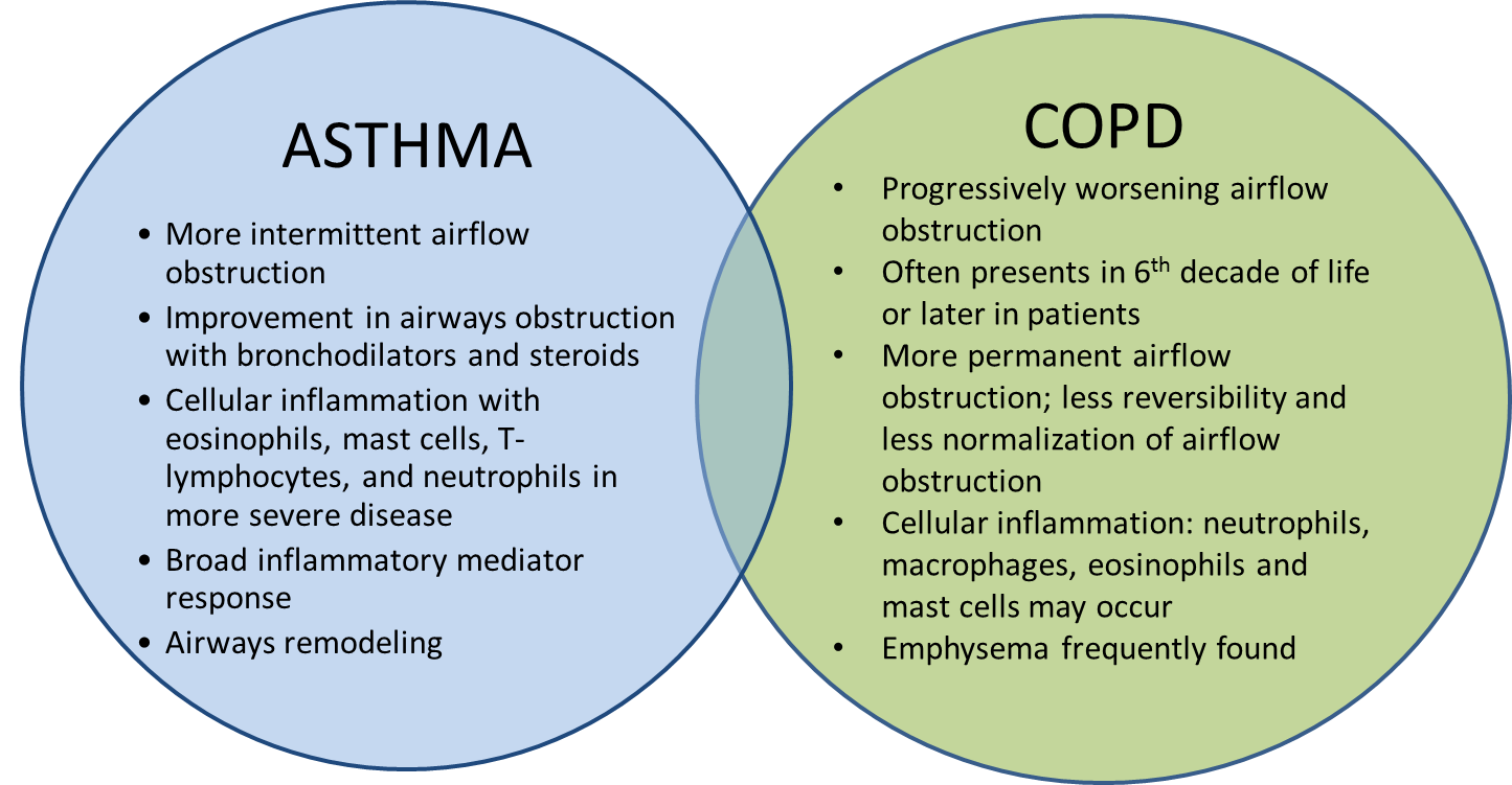 The Differences Between Asthma and COPD