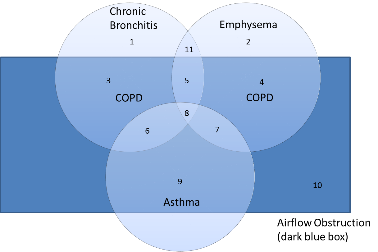 pics The Differences Between Asthma and COPD