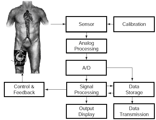 biomedical sensor  device and measurement systems