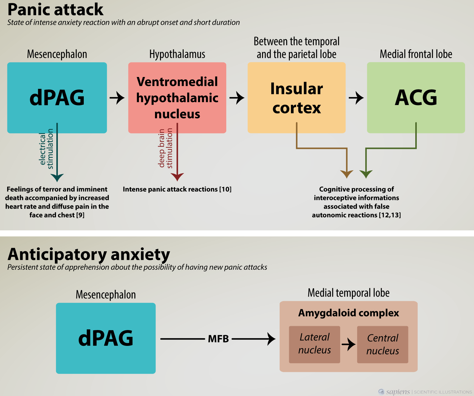 psychobiological aspects of panic disorder | intechopen