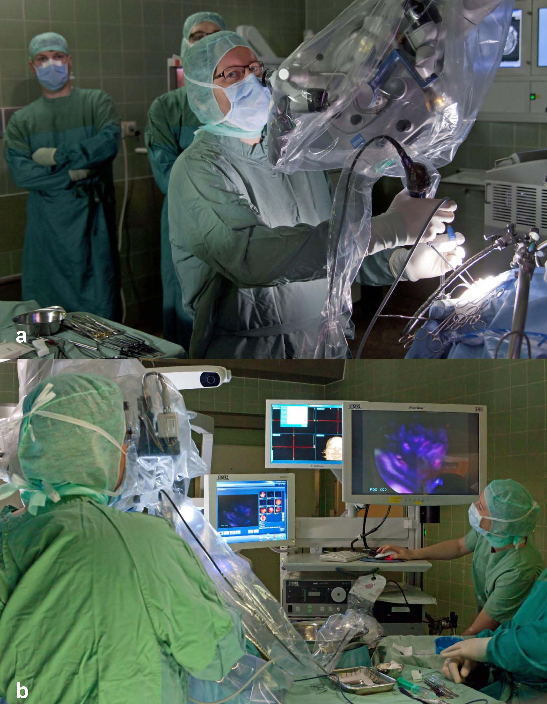 Endoscopic Room: Skull Base Endoscopic-Assisted Surgery