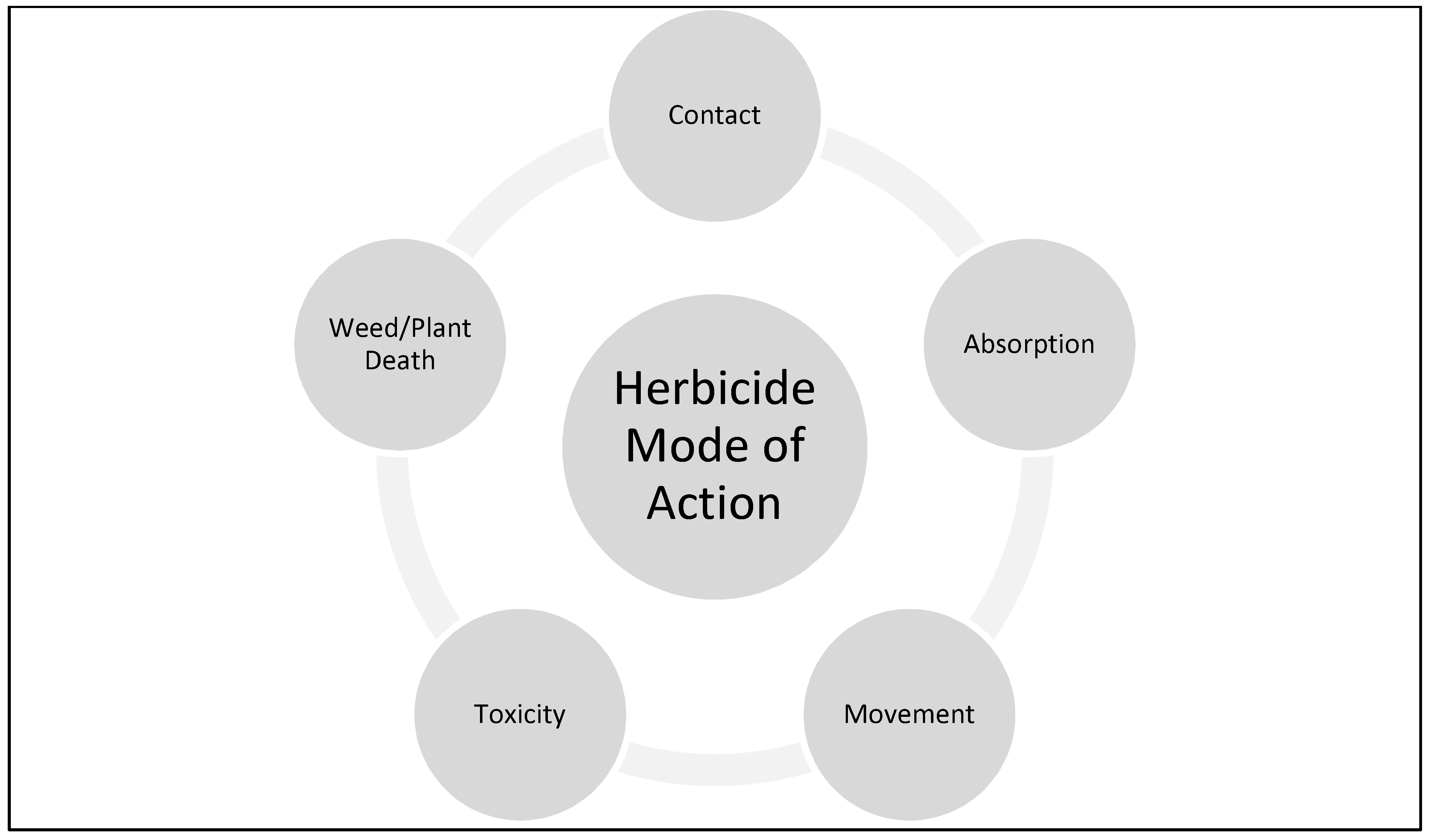 Modes of Action of Different Classes of Herbicides | IntechOpen