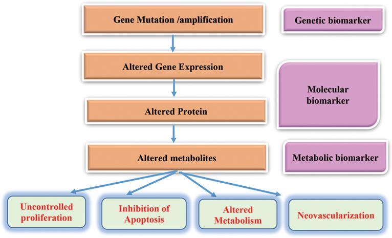 Cancer Biomarkers Intechopen